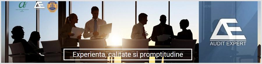 AUDIT EXPERT servicii de contabilitate, audit financiar, consultanta fiscala Bucuresti Logo