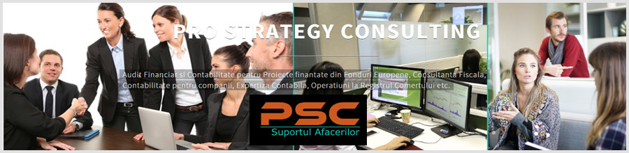 PRO STRATEGY CONSULTING Servicii de audit si contabilitate personalizate Bucuresti Logo