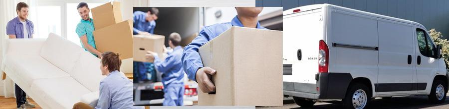 Unii cu Duba Professional Movers - Mutari locuinte, transport si depozitare marfa, Bucuresti Logo