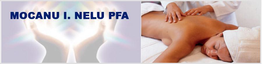 MOCANU I. NELU PFA Logo