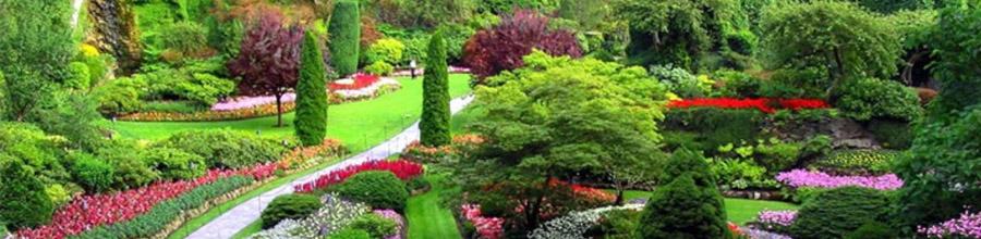 Garden Center Grup, Magurele / Ilfov - Amenajari gradini, comert cu material dendro-floricol Logo