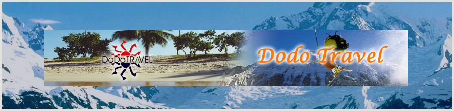 DODO TRAVEL Logo