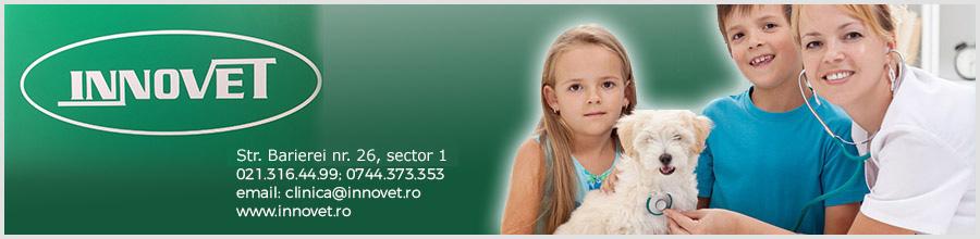 Innovet-cabinet veterinar-Bucuresti Logo