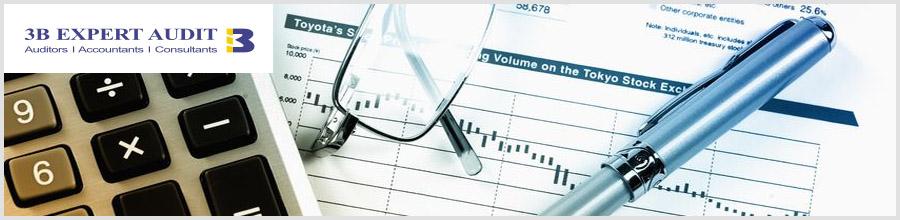 3B Expert Audit - audit, contabilitate, consultanta fiscala Logo
