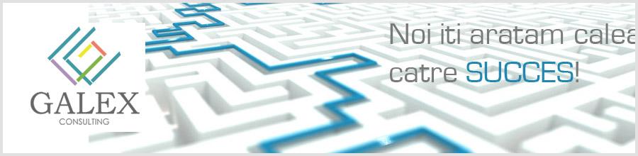 GALEX CONSULTING '99 Logo