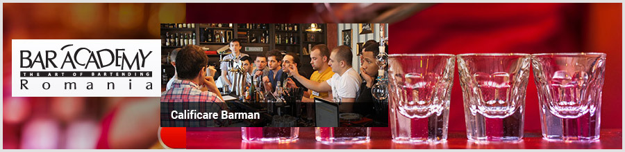 BAR ACADEMY Bucuresti Curs de calificare barman Logo