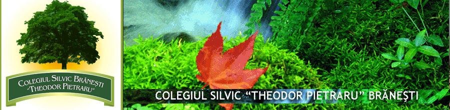 Theodor Pietraru, Colegiul Silvic - Bucuresti Logo