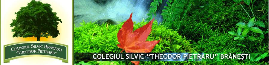 COLEGIUL SILVIC
