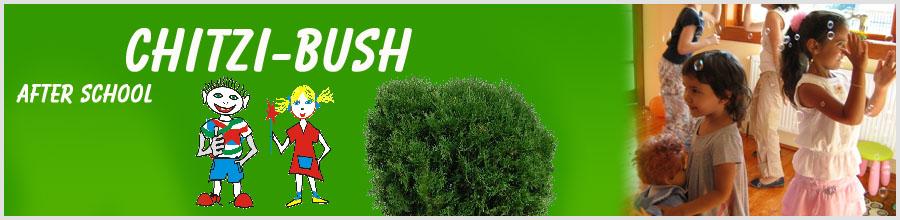 CHITZI-BUSH Logo