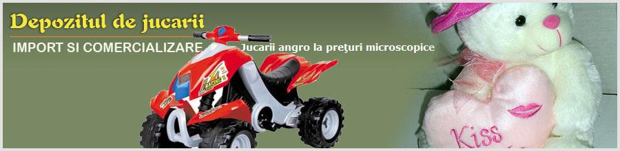 DEPOZITUL DE JUCARII Logo