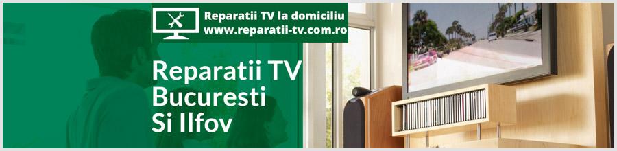 Andreescu V. Persoana Fizica Autorizata - Reparatii tv la domiciliu Logo