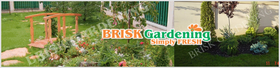 BRISK GARDENING Logo