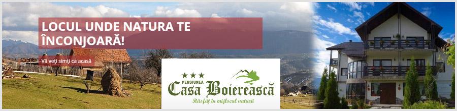 PENSIUNEA CASA BOIEREASCA***-jud. BRASOV Logo