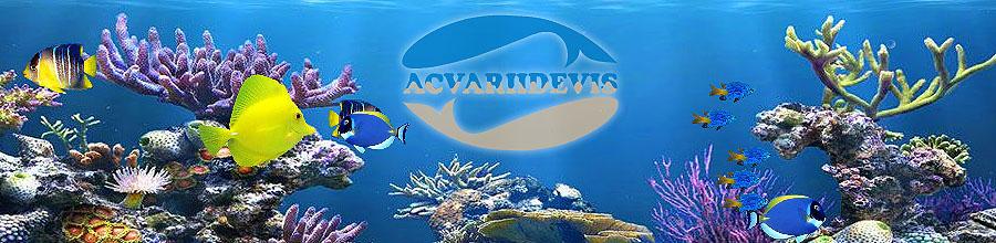 ACVARII DE VIS Logo