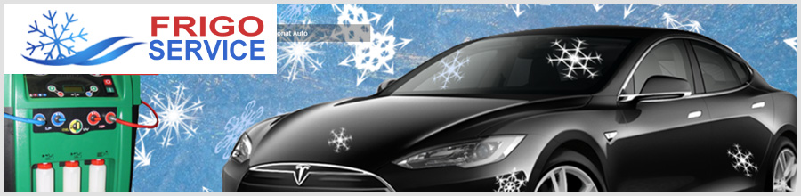 Frigo Service Bucuresti - Incarcare freon aer conditionat, frigidere, auto Logo