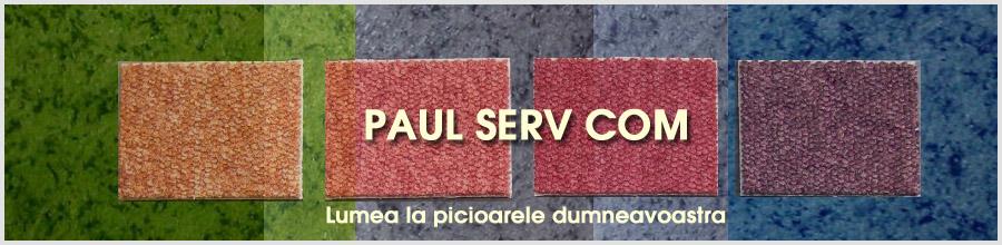 PAUL SERV COM Logo