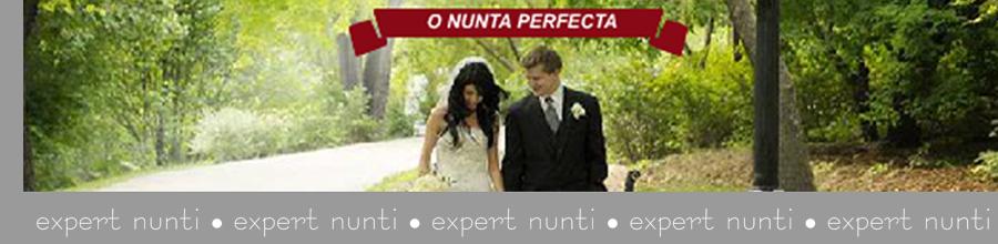 EXPERT NUNTI Logo