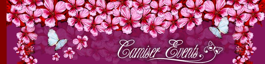 CAMISER Logo