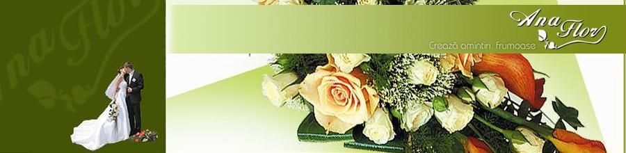 ANA FLOR Logo