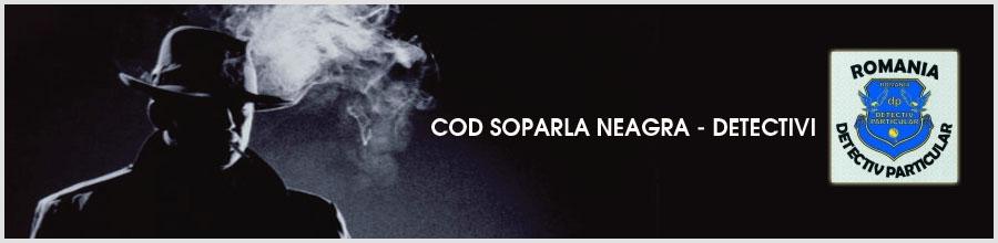COD SOPARLA NEAGRA - DETECTIVI Logo