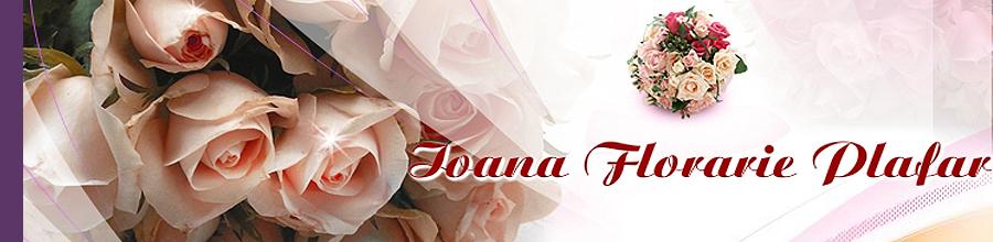 FLORARIA IOANA Logo