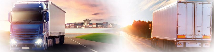 Apex Saltrans - Transport rutier public intern si international de persoane, Dobroesti, Ilfov Logo
