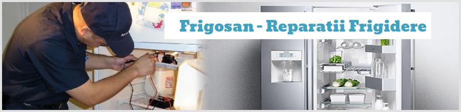 Frigosan - Reparatii Frigidere George Zamfir Bucuresti Logo