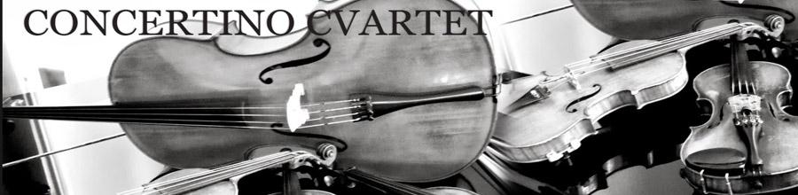 Cvartetul Concertino Timisoara Logo