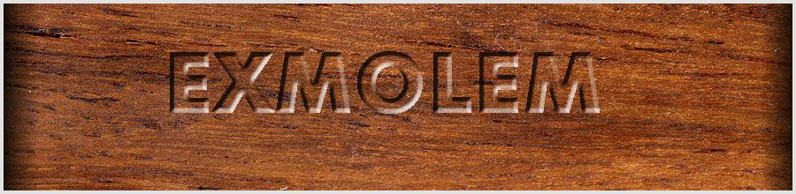 EXMOLEM Logo