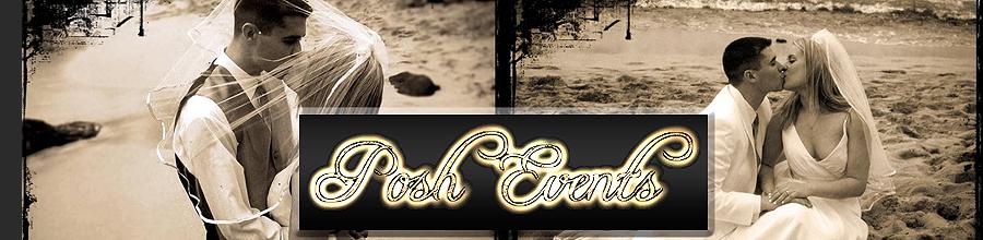 Agentia Posh Events by Alexandra Roman Logo