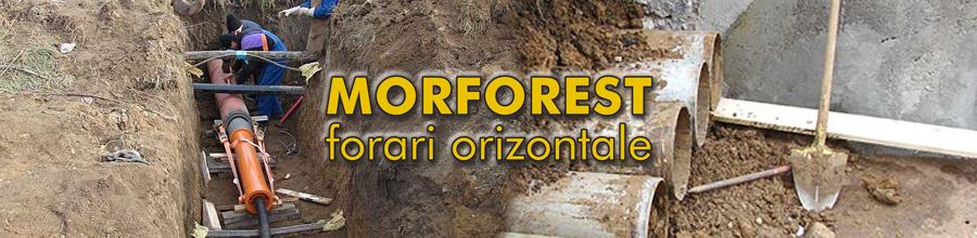 Morforest Logo