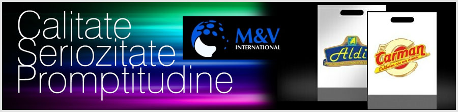 M & V INTERNATIONAL Logo