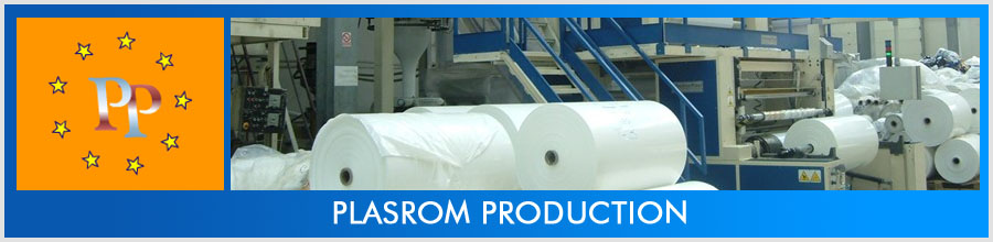 PLASROM PRODUCTION Logo
