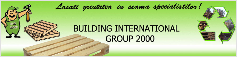BUILDING INTERNATIONAL GROUP 2000 Logo