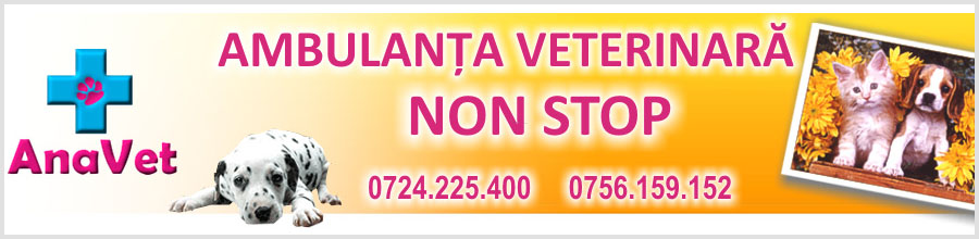 Clinica veterinara ANA VET, ambulanta veterinara Bucuresti Logo