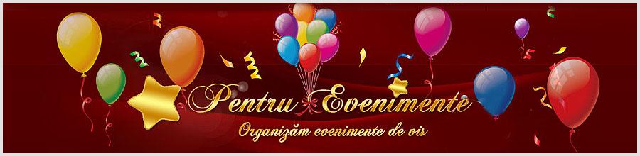 Pentruevenimente.ro - Magazin cu articole pentru nunti - Buzau Logo