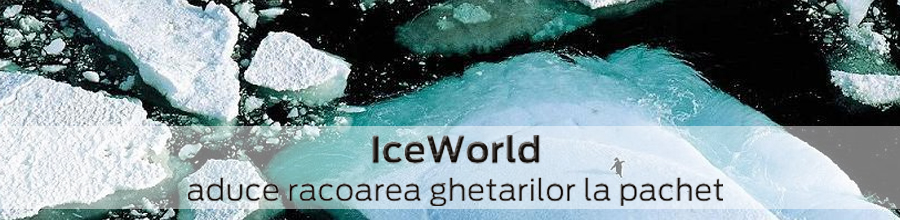 ICE WORLD Logo