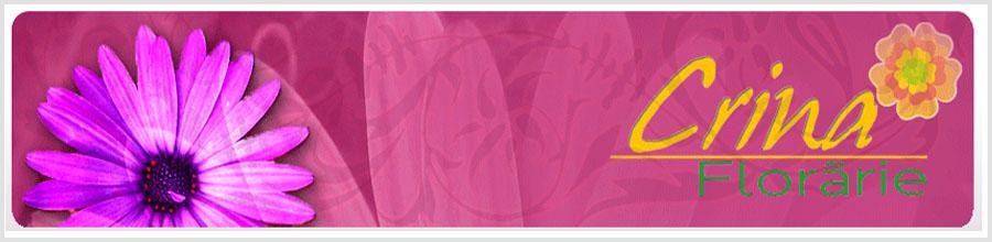 Floraria Crina Logo