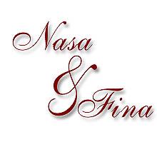 NASA & FINA EVENTS Logo