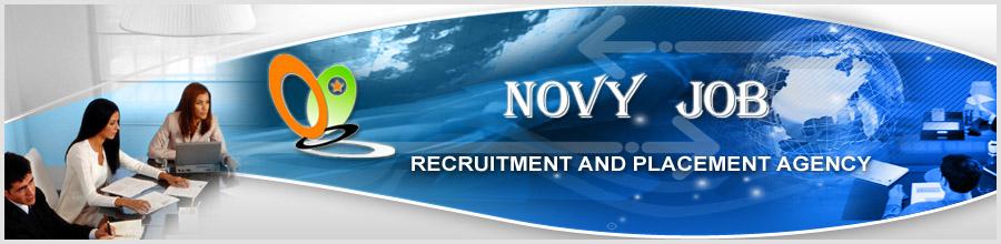 NOVY JOB Logo