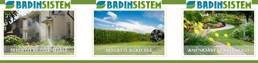 Badin Sistem Logo