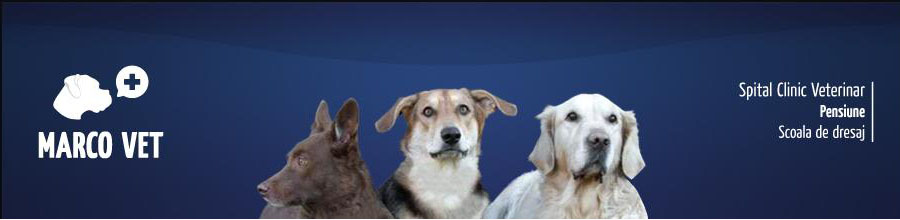 Marco Vet-cabinet veterinar-Pipera Logo