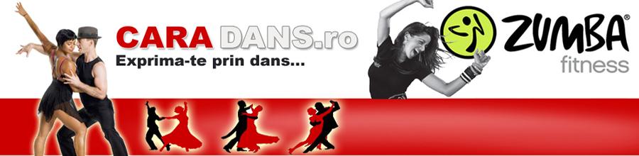 CARA DANS Logo