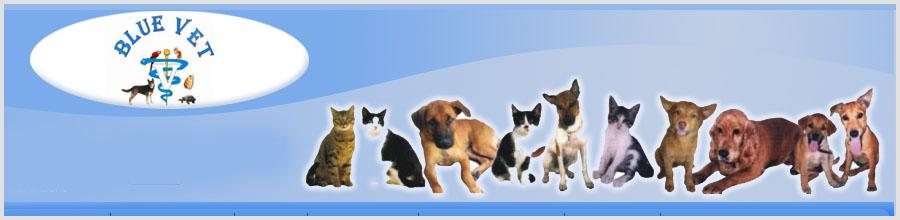 Cabinet veterinar Bluevet Logo