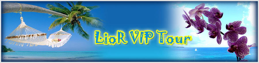 LIOR VIP TOUR Logo