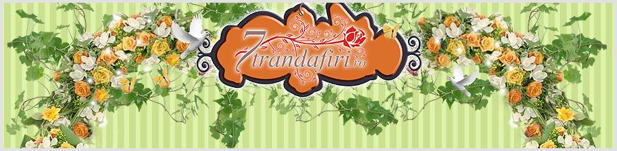 7 Trandafiri Logo