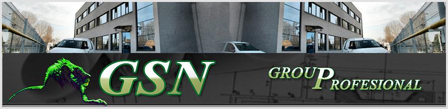 G.S.N. GROUP PROFESIONAL Logo