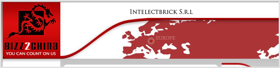 Intelectbrick Logo