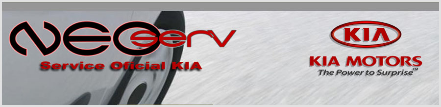 NEOSERV Ploiesti Logo