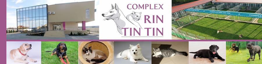 Complex RIN TIN TIN Logo